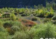 白河湾自然风景区