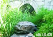 故事九城:朝宗桥的嵌石和镇水兽