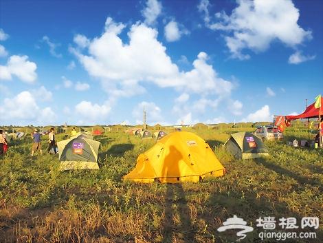 2019张北草原音乐节攻略