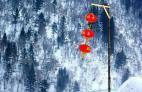 北京元宵节去哪玩