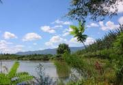 感受原生态:北京三大湿地公园完全攻略