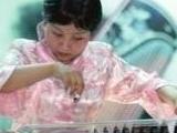 清华大学绝症女生开个人演奏会