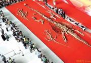 中国科技馆新馆迎来3具恐龙化石