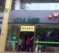 小肥羊(东直门店)