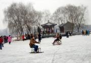 北京公园冰场厚度不够年内暂缓开放
