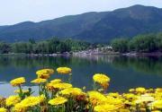寻找春的身影 北京十大踏青景点