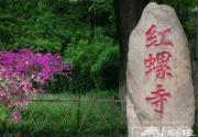 春游赏花与养生 红螺寺踏春攻略