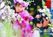 2010年玉渊潭樱花节4月3日开幕