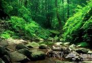京郊仙境寻清凉 雾灵山深度旅游推荐