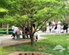 2020北京雁栖湖景区停车场及环湖各停车场收费价格调整公告