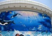北京可以看海豚的地方