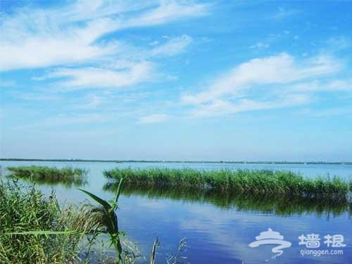 天津 神奇的七里海