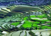 中国十个美到让人魂不守舍的地方