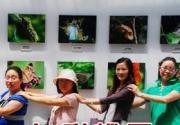七彩蝶园-与百蝶共舞