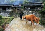 """中国最美丽的小镇 自驾千里追""""凤凰""""游记"""