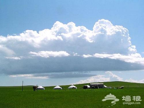 在锡林郭勒草原旅行不容错过的13件事[墙根网]