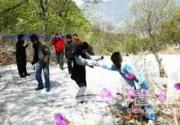 野三坡白草畔旅游风景区