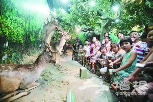 17个家庭留宿自然博物馆