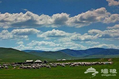 贡格尔草原 内蒙古那片盛产皇后贵妃的草原[墙根网]