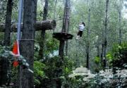 做个阿凡达 飞越京郊丛林