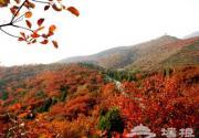 红螺山 红叶组成的风景画