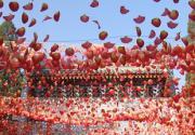 15日开始 创意玩转北京香山红叶节
