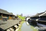 上海乌镇自游人 静逸繁华新体验