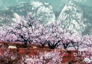 2012北京京郊旅游手册之海淀区