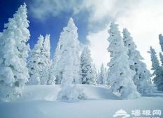 北京出发寻冰雪:那些你不知道的秘密