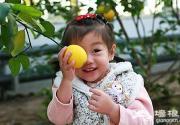 冬季北京采摘不停歇 南国水果一箩筐