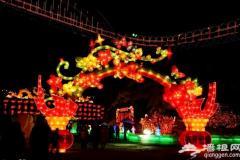 2011年第25届龙庆峡冰灯艺术节