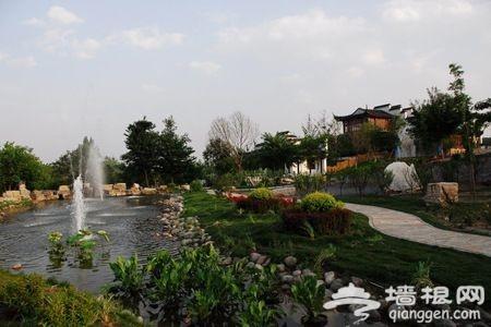 京郊寻春觅绿 森林公园里绿地是享受