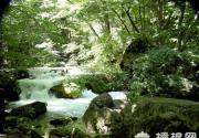 古崖居风景区2011全民健身登山踏青赏花活动
