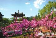 北京花季花期如约 各大赏花地推荐