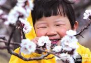 延庆县第十届杏花节开幕 主打低碳骑游