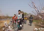 延慶縣杏花節千人自行車騎游大會舉行