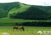 北京出发去骑马 北京周边几大草原攻略