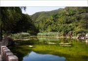 周末逛京郊--门头沟灵溪风景区