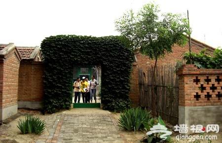 史东仪村:绿树掩映的蔬果乡