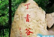 八达岭国家森林公园 丁香谷里寻丁香