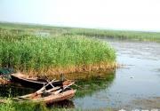 衡水湖京津冀最美丽的湿地公园