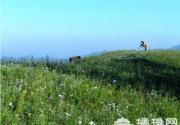 与大自然亲密接触 京郊十大露营地推荐