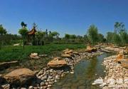 京郊南海子 北京最大的湿地公园