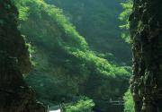 平谷国际养生旅游文化节开幕