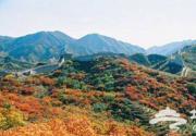 八达岭红叶节将于2011年9月21日开幕