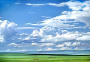 馳騁北京最近濕地草原 沽源自駕一日游