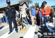 警犬首次亮相颐和园 助其国庆安保