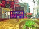 吃最正宗北京小吃 品地道北京味
