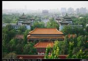 景山望故宫(摄影)