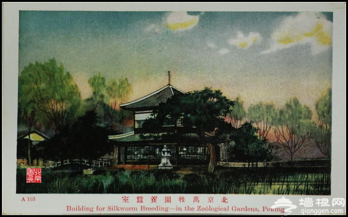 老北京明信片[墙根网]